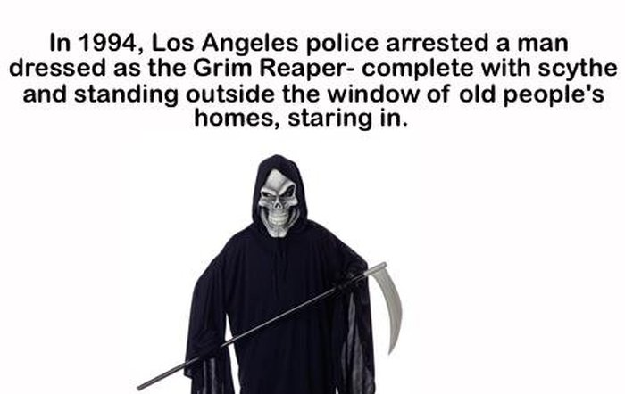 Strange, Bizarre And Entertaining Facts For Your Brain (19 pics)