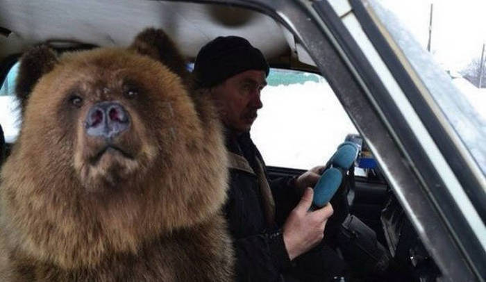 Things You Can Expect To See If You Ever Take A Trip To Russia (45 pics)
