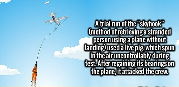 You're Going To Be A Lot Smarter After You Memorize These Fascinating Facts (18 pics)