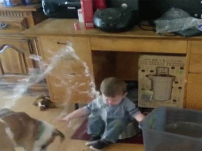 Kids Who Lost A Battle With Gravity (13 gifs)