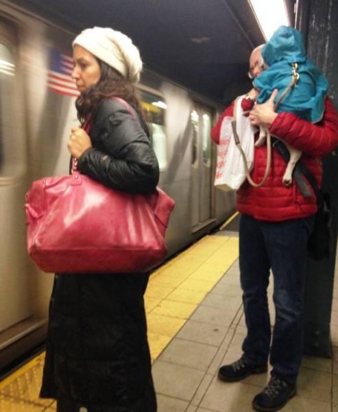 Gente extraña que usa el Transporte Publico