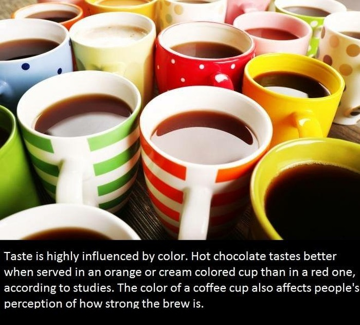 It's Time To Educate Yourself With These Interesting Facts (21 pics)