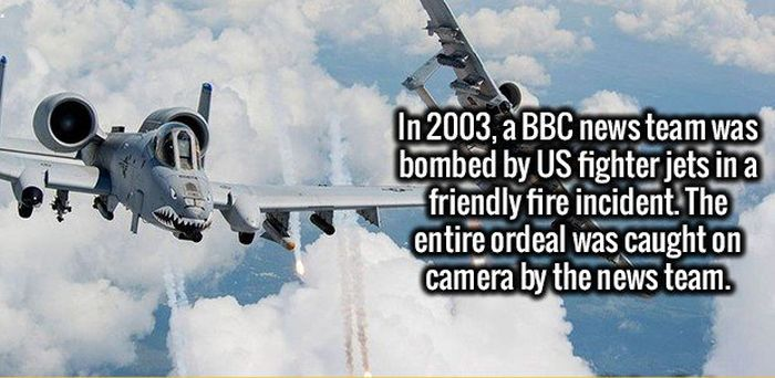 Sensational Facts That Will Stimulate Your Brain (19 pics)