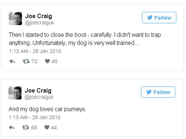 Guy Interrupts Couple Having Sex While Walking His Dog (13 pics)
