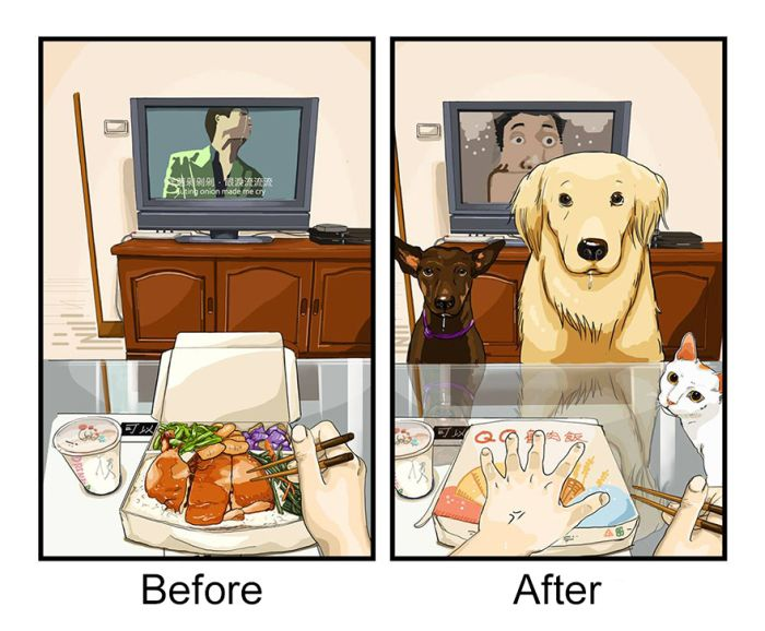 Life With A Dog, Before And After (9 pics)