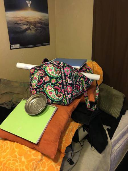 Guy Stacks Massive Amount Of Junk On His Sleeping Girlfriend (31 pics)