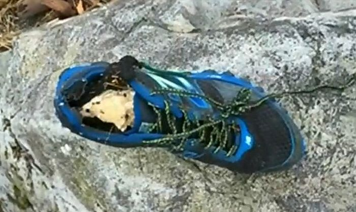 Creepy Shoes With Severed Feet Keep Appearing In The Pacific Northwest (3 pics)