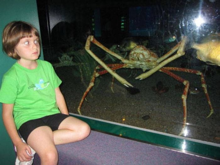 Take A Deep Breath And Get Ready To Say Nope (43 pics)