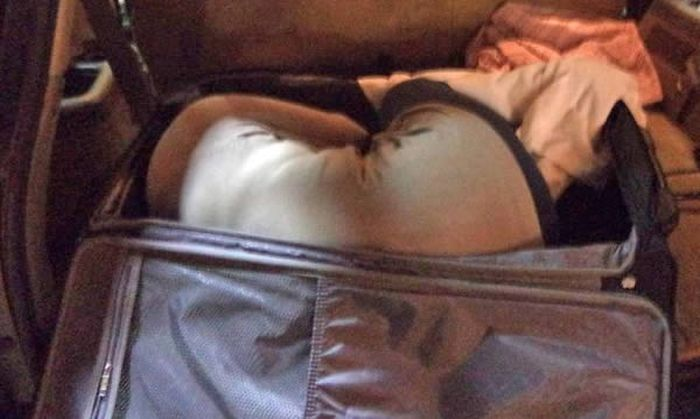9 Times When People Failed To Smuggle Items Across Boarders (9 pics)