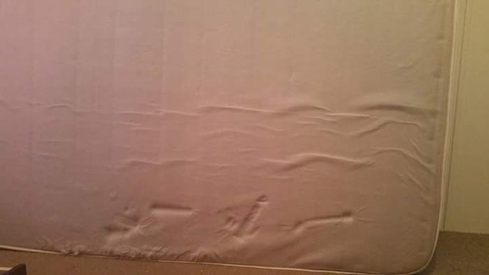 Can You Guess What Was Underneath This Woman's Mattress? (2 pics)