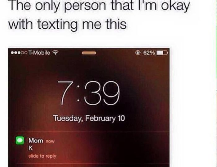 We've All Had These Conversations With Our Mom At Some Point (26 pics)