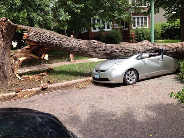 If Your Day Looks Like This, It's Completely Ruined (46 pics)