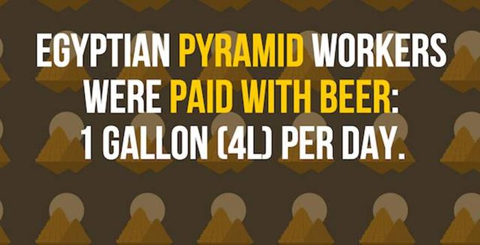 25 Facts About Beer That You Need To Know (25 pics)