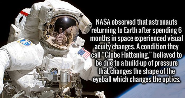 Interesting Facts That Are Definitely Worthy Of Being Stored In Your Brain (19 pics)