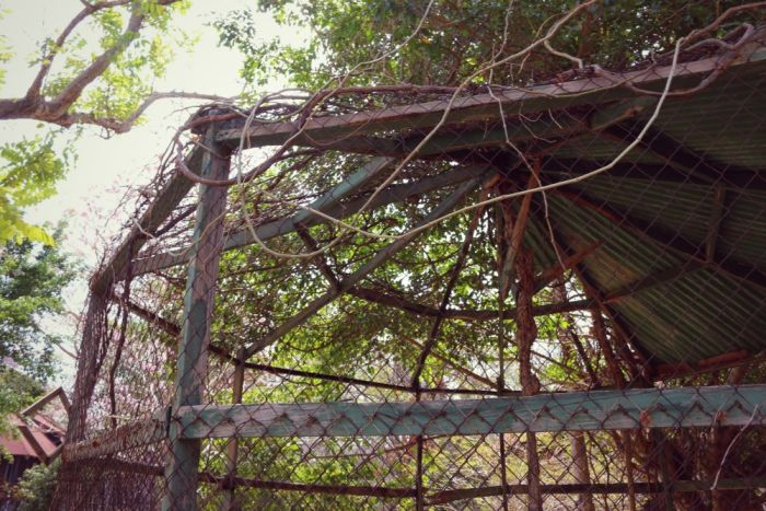 This Abandoned Resort On Contadora Island Has Become A Forgotten Place (42 pics)