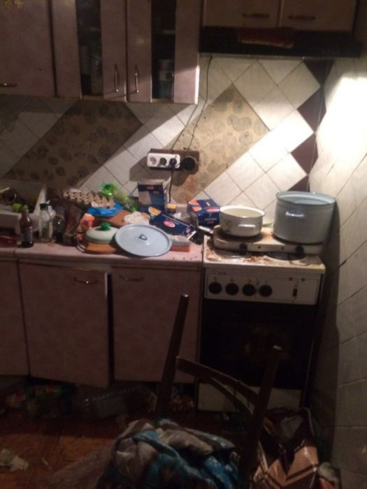 Landlord Discovers Rented Cottage Trashed By Ten Dogs And An Old Lady (9 pics)