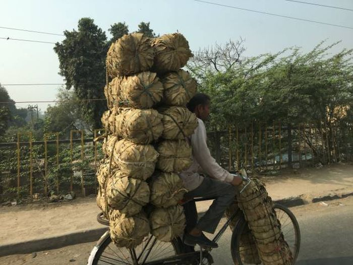 Photos That Show Why India Is Like No Other Place On Earth (41 pics)