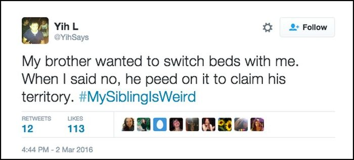 Jimmy Fallon's Viewers Share Strange Stories About Their SIblings (18 pics)