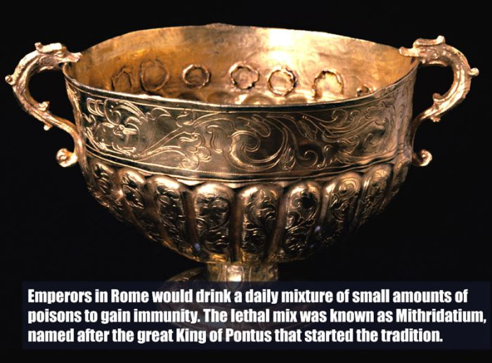 Crazy Facts You Need To Know About The Roman Empire (10 pics)