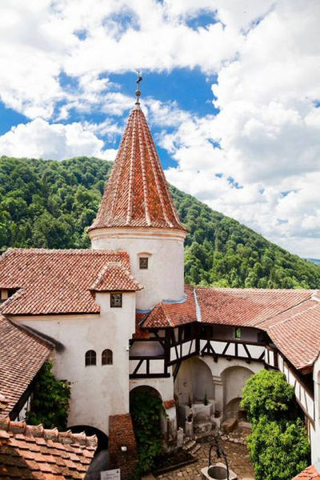 Dracula's Castle Is Up For Sale With A Price Tag Of $80 Million (28 pics)