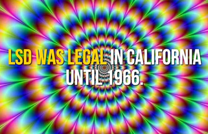 Cool Facts About California, The Golden State (24 pics)