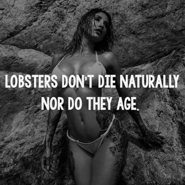Sexy Girls And Solid Facts That Will Help Make Your Smarter (25 pics)