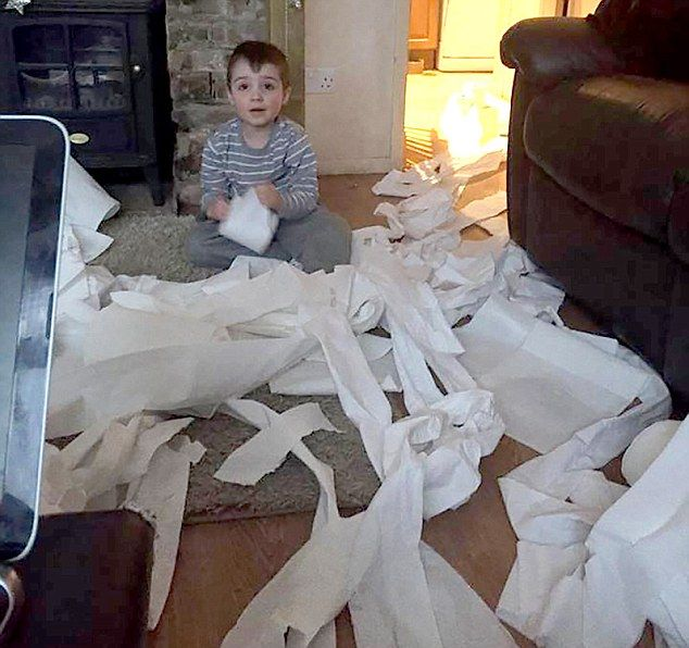 Four Year Old Kid Unravels 12 Rolls Of Toilet Paper In One Sitting (5 pics)