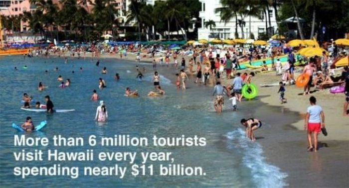Interesting Facts About The Beautiful State Of Hawaii (20 pics)