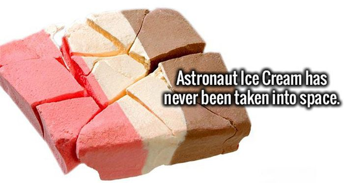 Fresh Facts For You And Your Brain To Memorize (20 pics)