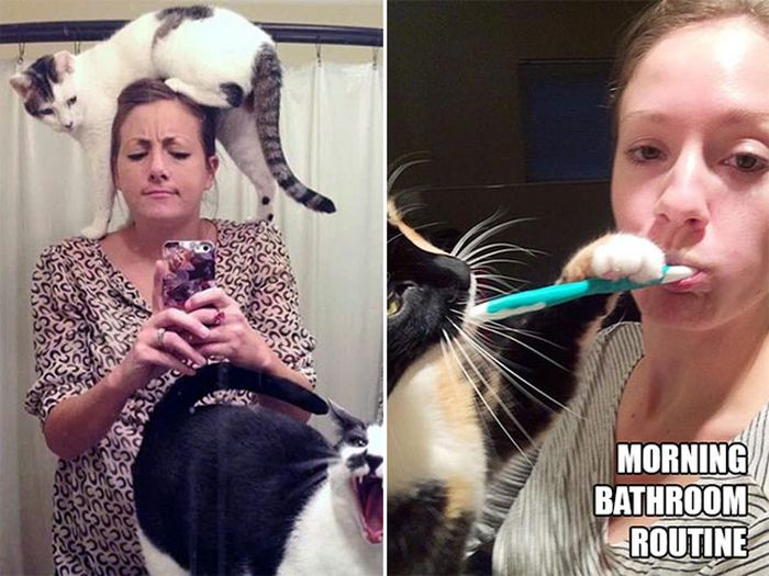 Magical Moments That All Cat Owners Can Relate To (18 pics)