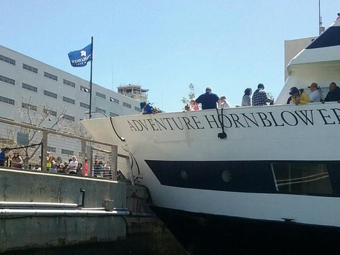 Cruise Ship Collides With A Dock In San Diego (4 pics)