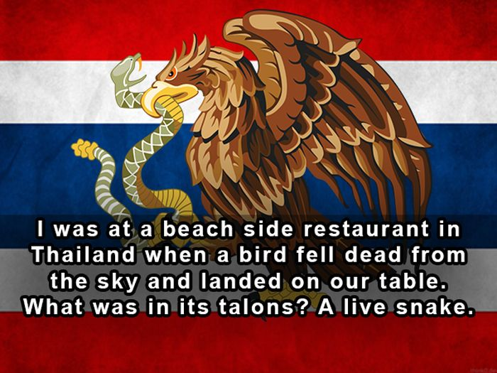 17 Of The Strangest Things People Have Ever Seen At Restaurants (17 pics)