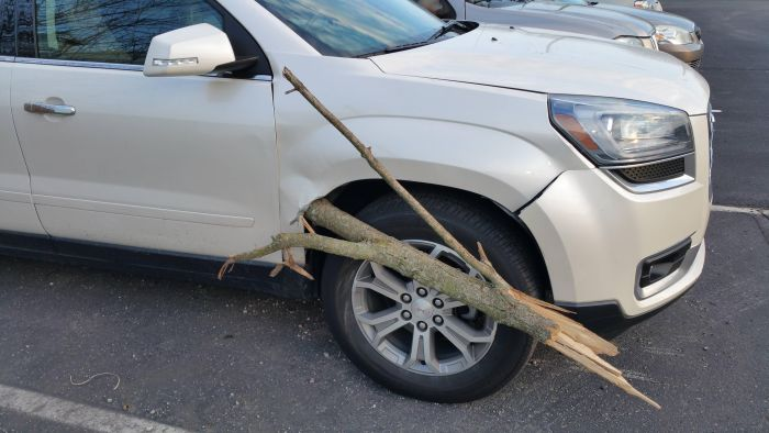 Large SUV Gets Penetrated By A Big Wooden Stick (3 pics)
