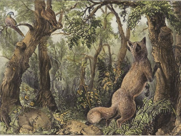 Can You Find The Many Hidden Faces In This Woodland Scene?  (2 pics)