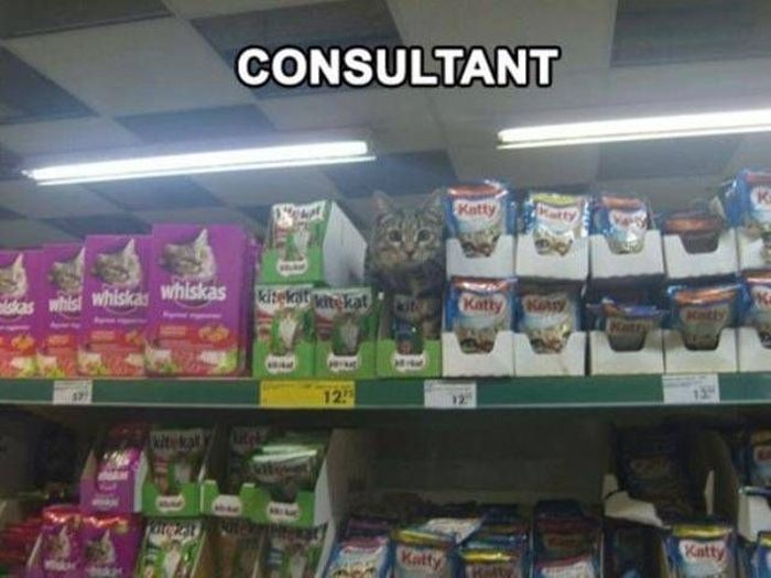 Work Fails & Job LOLs. Part 63 (47 pics)