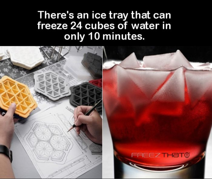 Awesome Facts And Entertaining Trivia That Will Get Your Brain Going (17 pics)