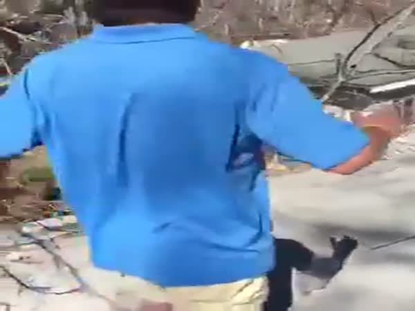 Playing Dizzy Bat On A Roof Is A Bad Idea