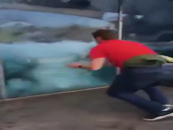 Guy Playing With A Polar Bear
