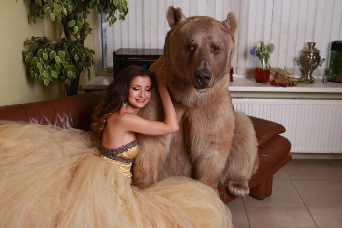 Beautiful Russian Model Gets Close With Giant Beat For A Photo Shoot (20 pics)