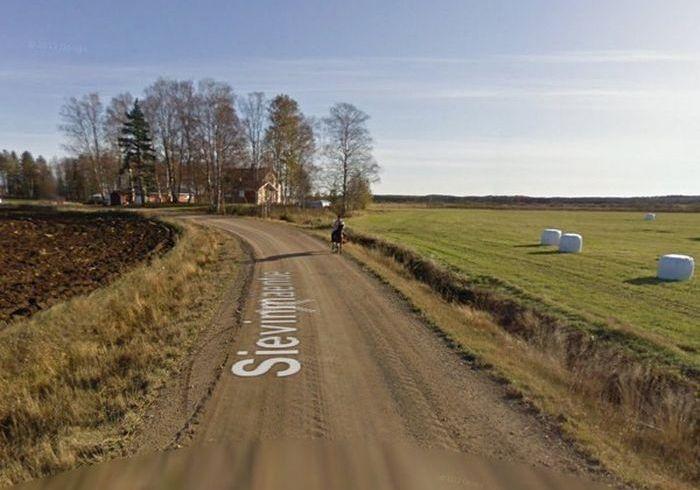 Horse Runs Away After Seeing Google Street View Car (5 pics)