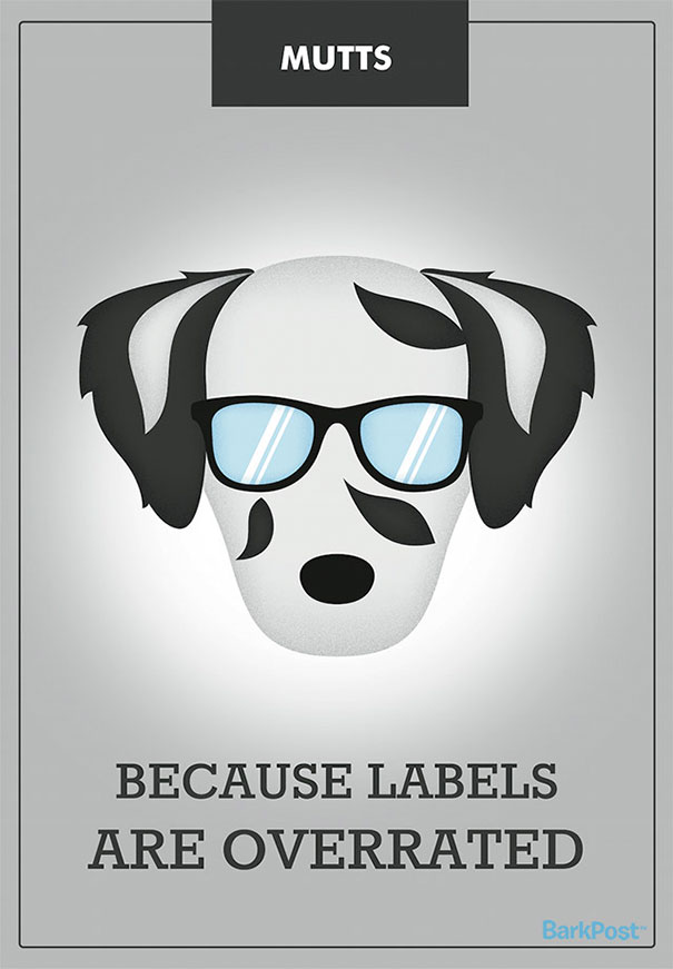 Honest Slogans That Break Down Different Dog Breed Stereotypes (12 pics)