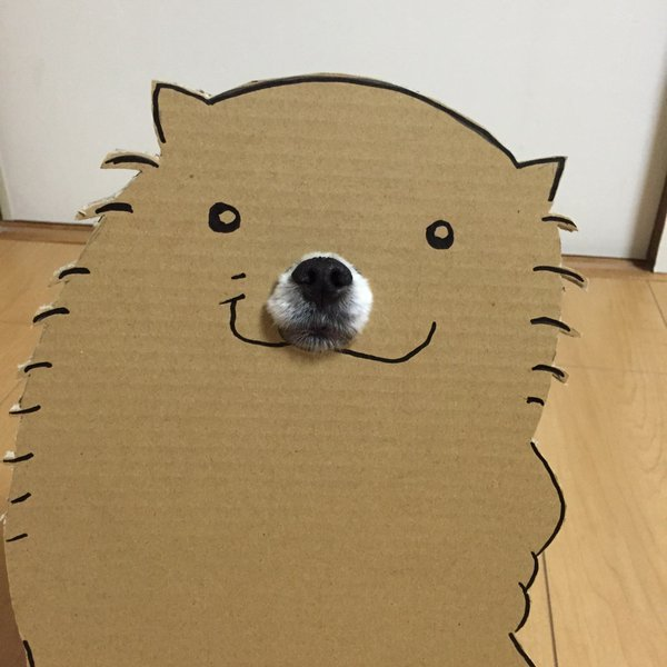 This Cardboard Dog Is Not What It Appears To Be (5 pics)