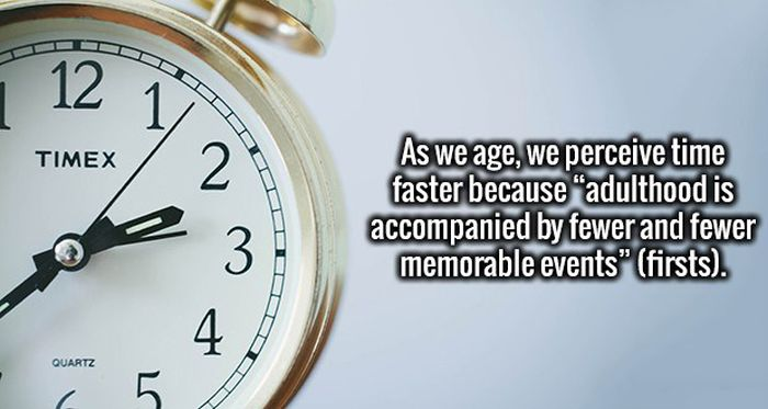 Open Up Your Mind And Let These Interesting Facts Inside (18 pics)