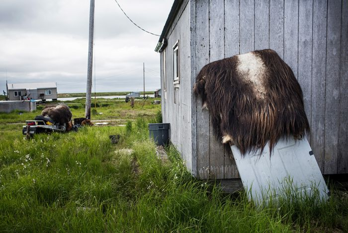 A Look At What Life Is Really Like In Alaska (29 pics)
