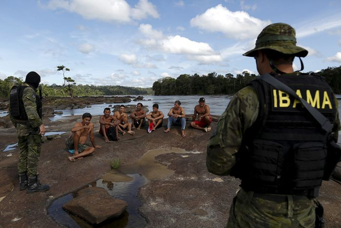 Authorities Are Cracking Down On Activities In The Amazon (14 pics)