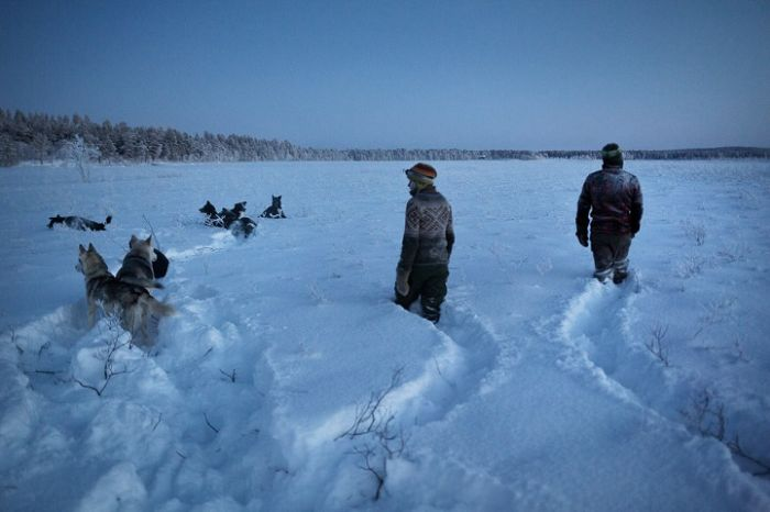 Life In The Arctic Isn't So Bad After All (20 pics)