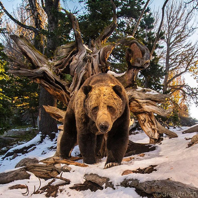 This Is Why You Need To Start Following National Geographic On Instagram Right Away (31 pics)