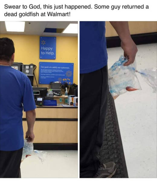 Sooner Or Later Idiots Are Going To Rule The World (41 pics)