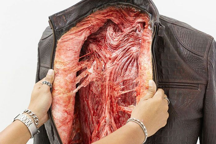 PETA Uses Fake Leather Clothes To Send A Strong Message (9 pics)