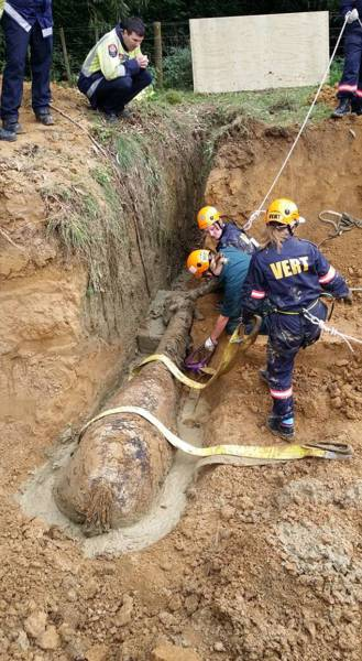Horse Gets Rescued After Spending Four Hours In A Ditch (11 pics)